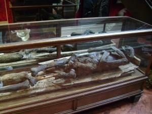 A 500BC Mummy